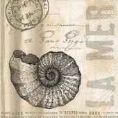 "Салфетка для декупажа ""Морская раковина и письмо"" бумажная, 33х33 см, на фото 1/4 салфетки, 21773"