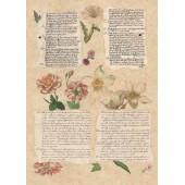 Бумага для декупажа SOFT PAPER TO-DO 041, 50х70 см, 45-47 г/м2, Письмо и цветы