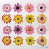 """Плёнка с печатью для техники Sospeso Trasparente 01-Daisy """"Маргаритки"""", 23х23 см, Monica Allegro"""