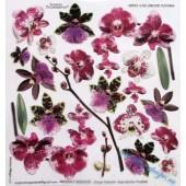 Плёнка с печатью для техники Sospeso Trasparente 3/06 Орхидеи, 23х23 см, Monica Allegro