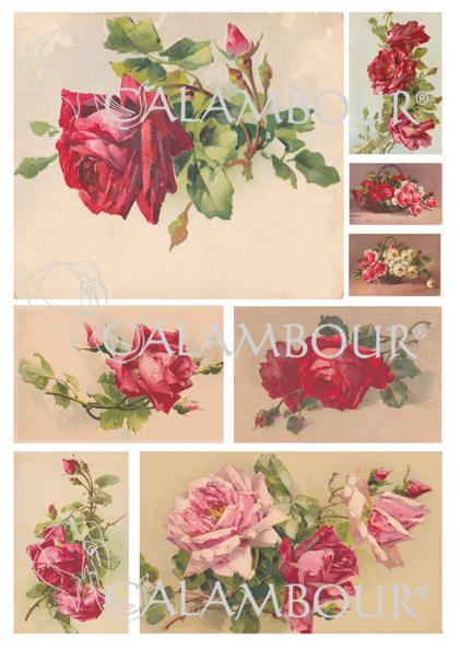 Рисовая карта Calambour DGR 152, 35х50 см, 40 г/м2, Чайные розы алые