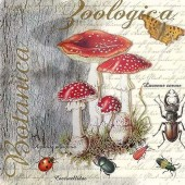 """Салфетка для декупажа """"Ботанический мухомор и жук"""" бумажная, 13313675, 33х33 см"""