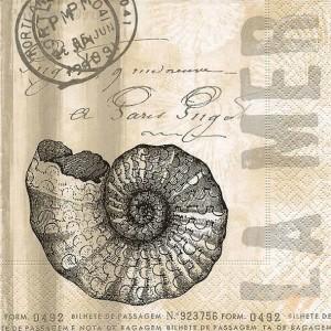 """Салфетка для декупажа """"Морская раковина и письмо"""" бумажная, 21773, 33х33 см"""