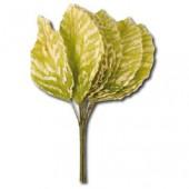 Декоративные листья искусственные SF113 светло-зелёные, Stamperia, 12 шт., 3х6 см