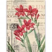 """Рисовая бумага для декупажа Craft Premier CD05203-1 """"Цветок и винтажное письмо"""", А4"""