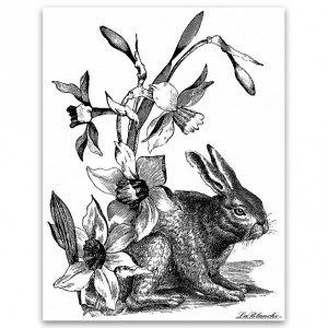 "Штамп полимерный La Blanche ""Rabbit with dafodils"", арт. LB1167, 11,5x9 см"