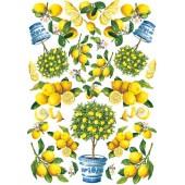 """Декупажная карта Calambour EASY 166 """"Лимонное дерево"""", 50х70 см"""