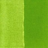 """Бумага для скрапбукинга с внутренним слоем CARDINAL, COR147, 30,5х30,5 см, ярко-зелёная """"Meadow"""""""