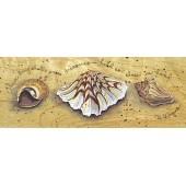 """Штамп резиновый на деревянной основе Janlynn 80269 """"Морские ракушки"""", 16,5х6,4 см"""